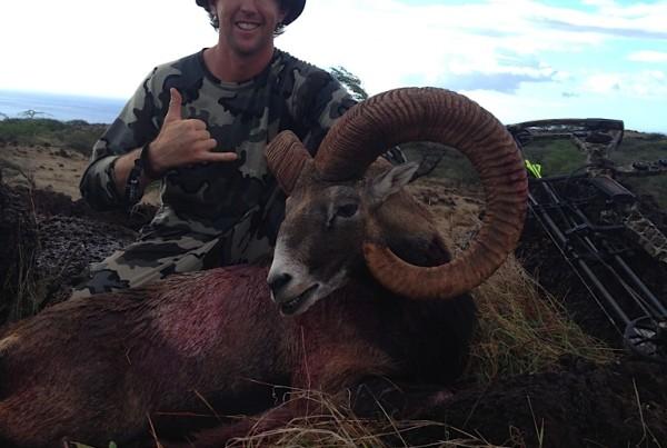 Hunting Kauai