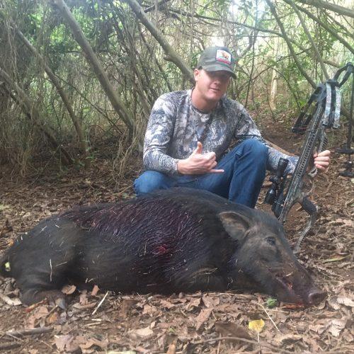 Kauai Boar Hunting