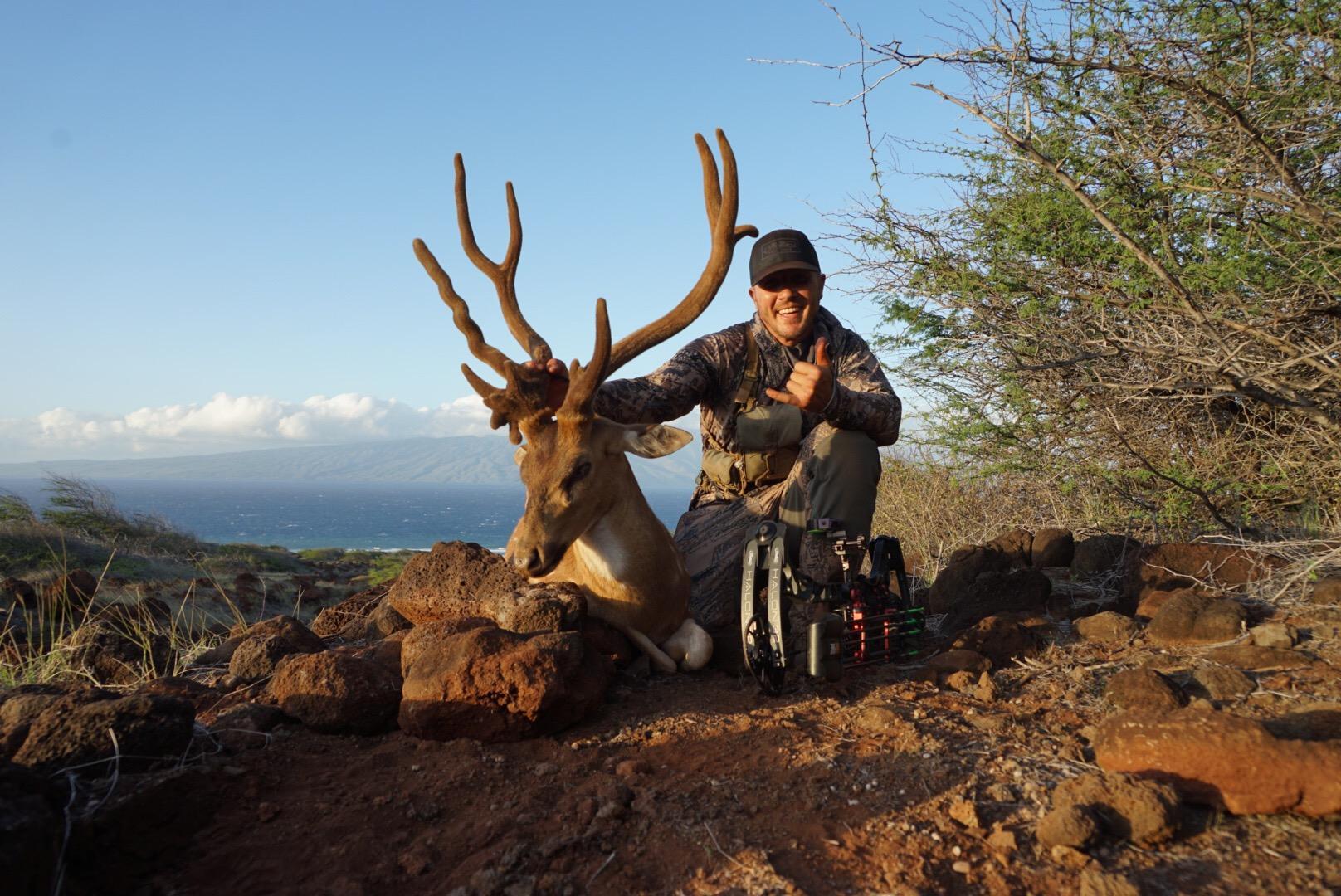 Kauai deer hunting fishing charters for Fishing and hunting