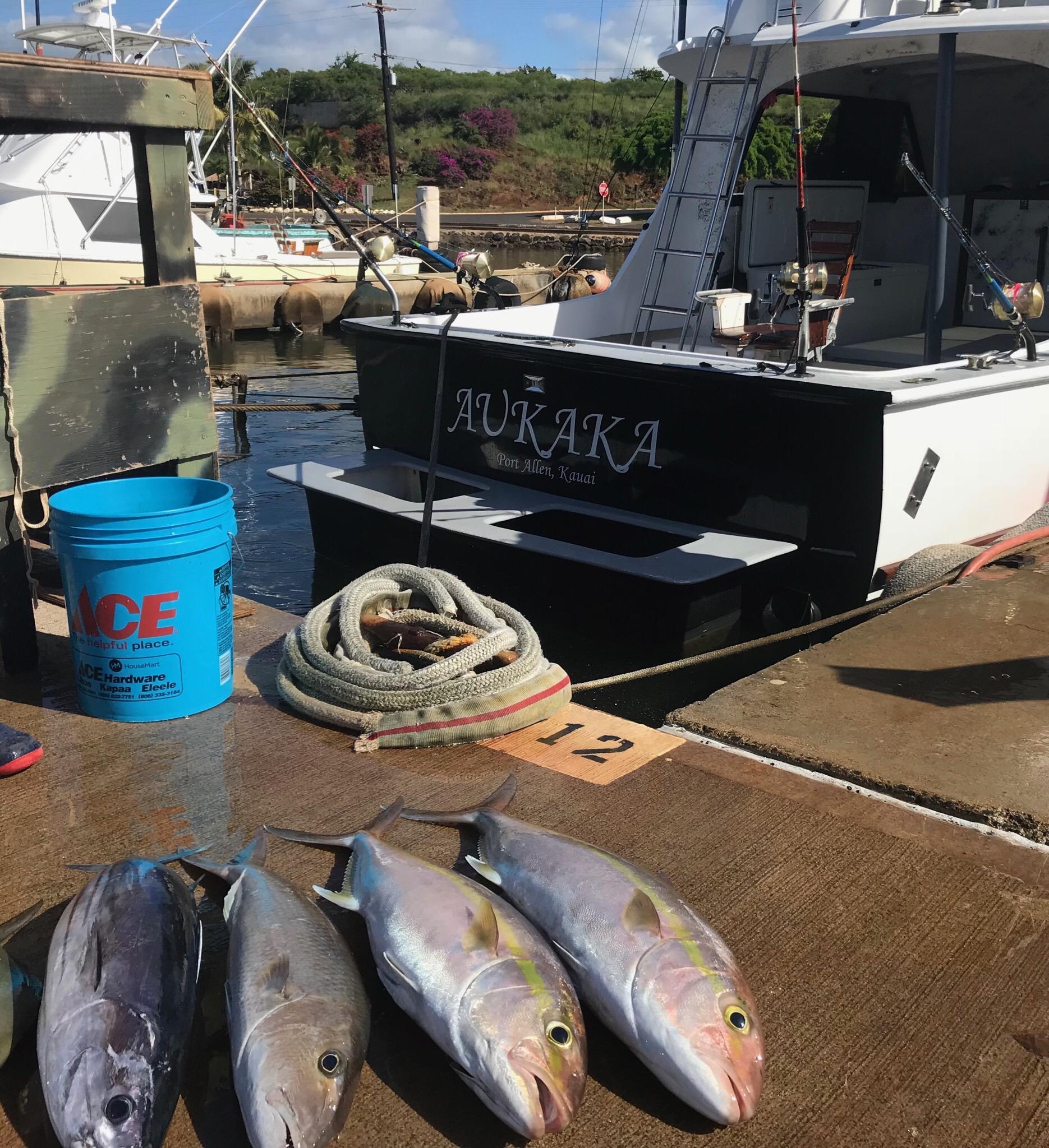 Bottom fishing in Kauai Hawaii