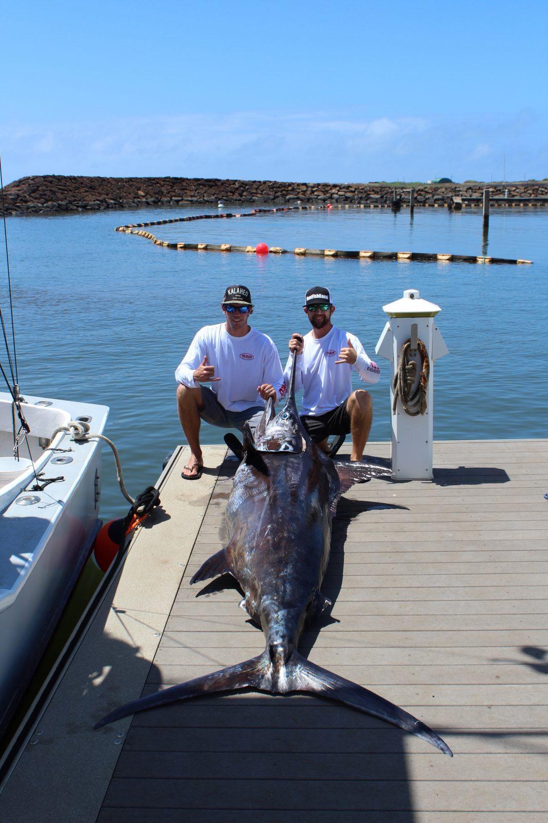 Blue marlin fishing in kauai hawaii for Fishing in kauai