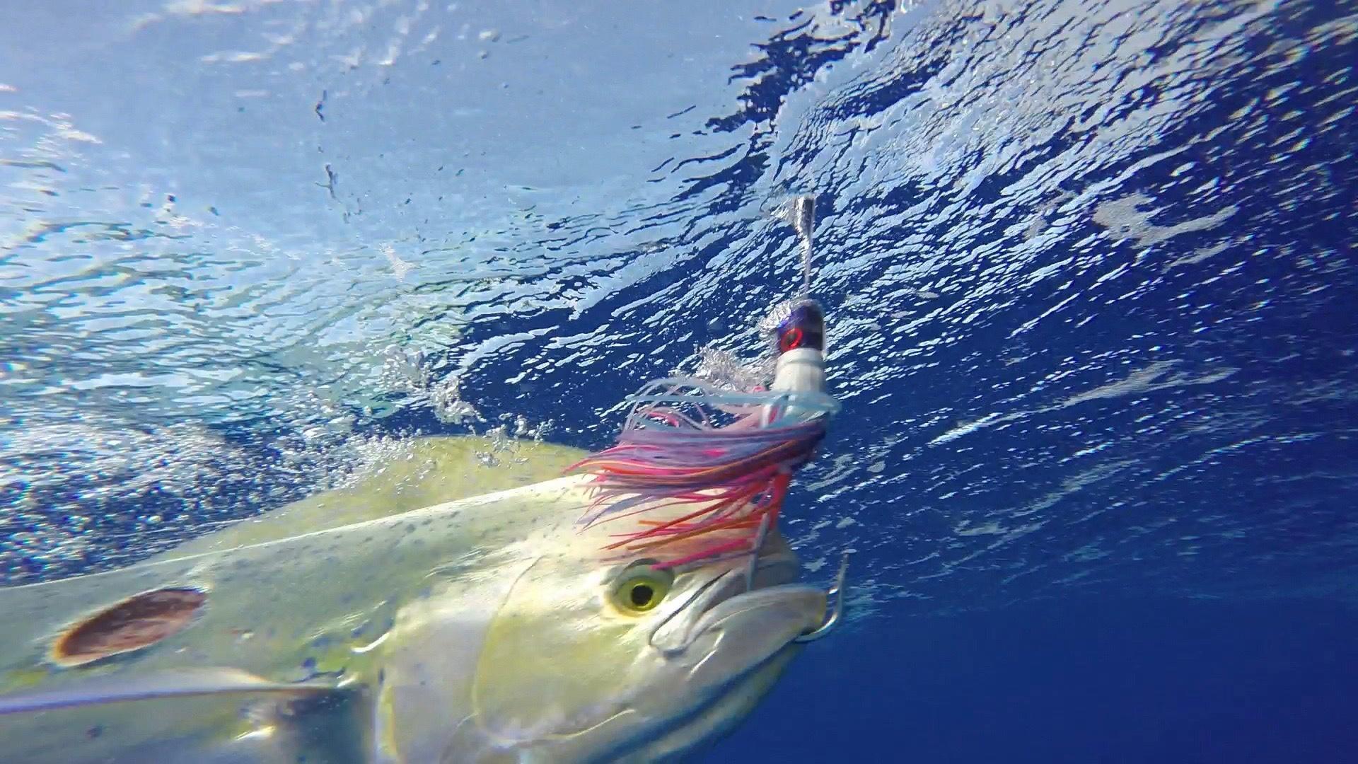 Fishing in Kauai, Hawaii